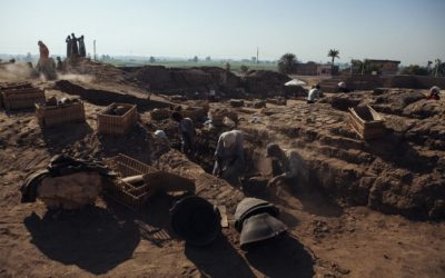 First Ever Funerary Garden Discovered in Egypt
