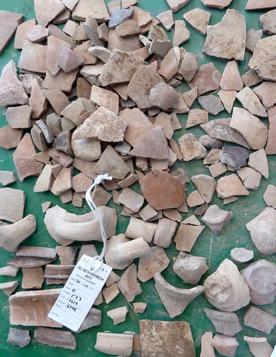 Collection of ancient pottery pieces