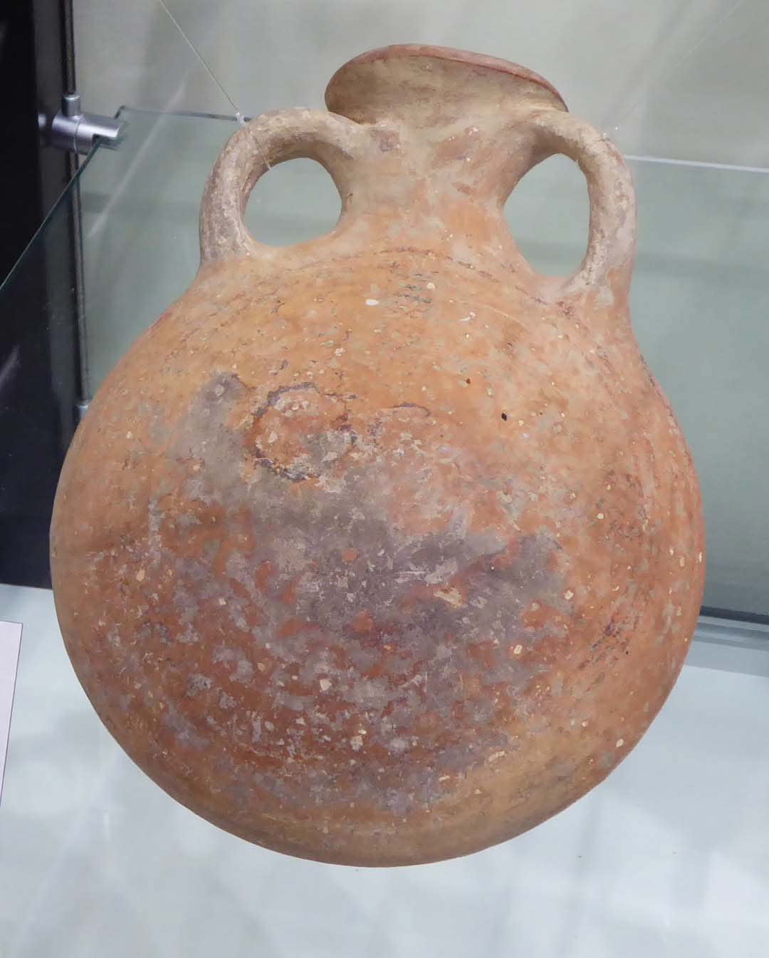 """A """"pilgrim flask"""" uncovered during archaeological excavation"""