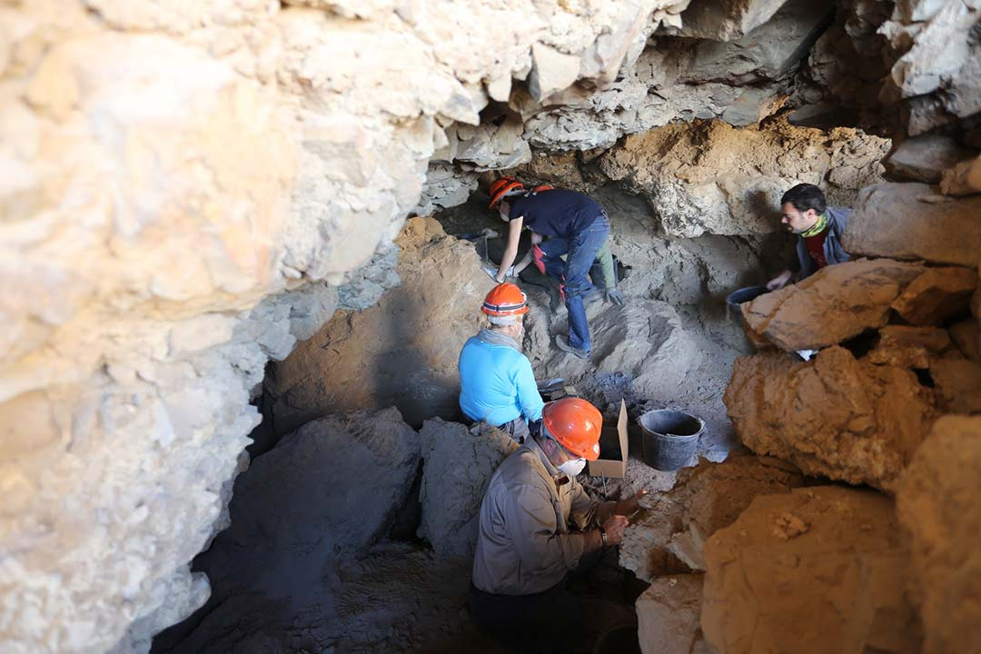 Archaeological discovery at Cave 53